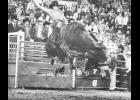 Greer's Barry Brown, The Bionic Bullrider, recently wrote a book that will have something for all readers.